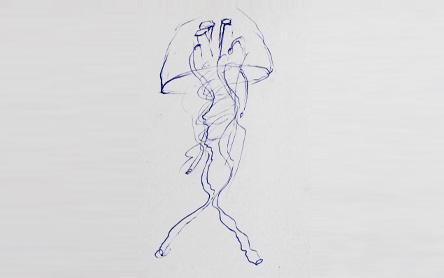 Zeichnung einer Qualle